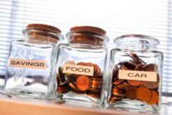 IVA Living Expenses Allowances