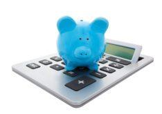 IVA Calculator
